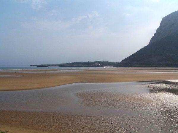 4 Playas Para Ir Con Perros En Cantabria Turismo De Cantabria Portal Oficial De Turismo De Cantabria Cantabria España